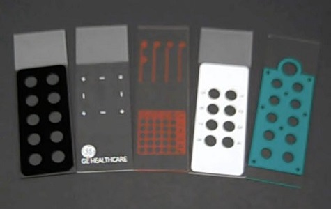 epoxy coated microscope slides