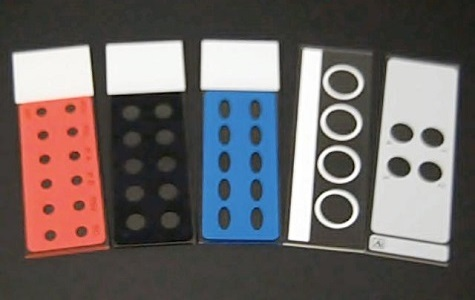 gelatin coated microscope slides